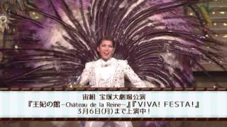 宙組公演『王妃の館 -Château de la Reine-』『VIVA! FESTA!』初日舞台映像(ロング)