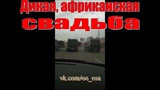 ДИКАЯ АФРИКАНСКАЯ СВАДЬБА. 27.10.2018 г. ОСА КАРАГАНДА