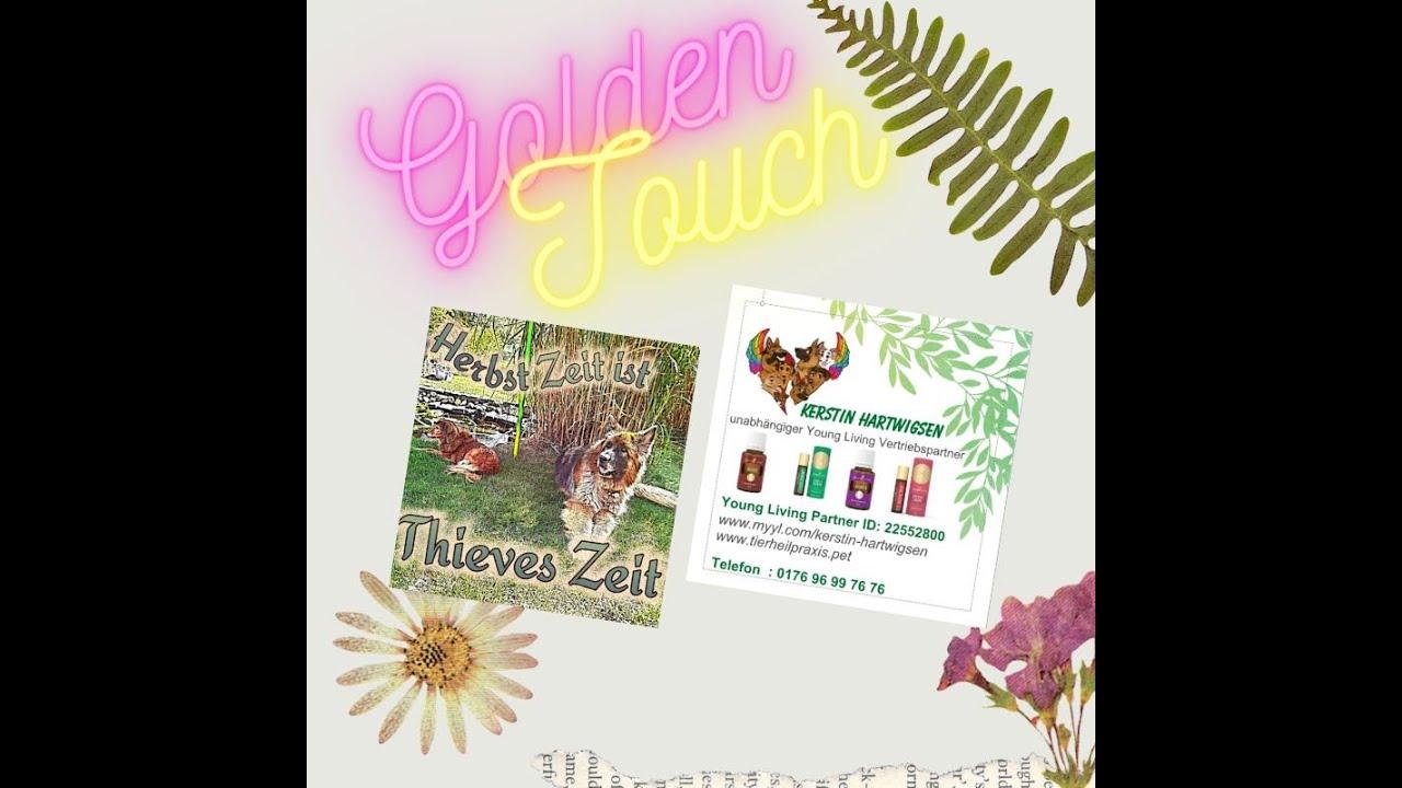 Düfte und Öle die uns erheben :) Das Golden Touch Set von Young Living im Fokus (2)