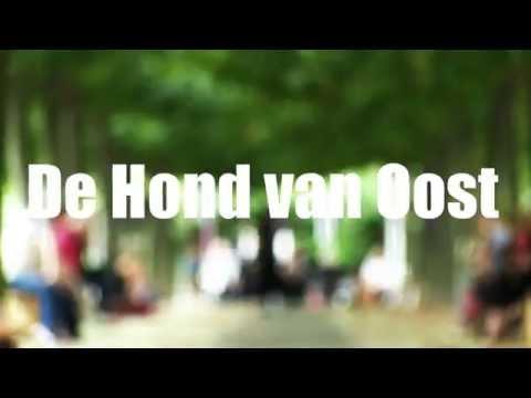 DHVO Trailer