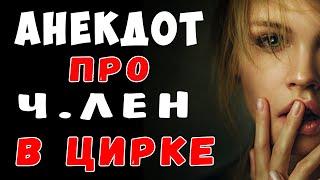 АНЕКДОТ Прибор Дрессировщика и Крокодила и Женщину в цирке Самые смешные свежие анекдоты