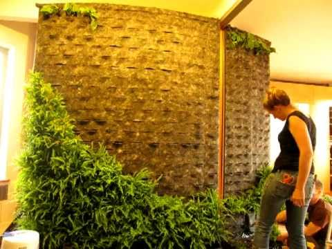 diy how to making of patrick blanc style green wall vertical garden youtube. Black Bedroom Furniture Sets. Home Design Ideas