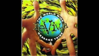 Peace (U.S. Radio Edit) - The World Wide Message Tribe
