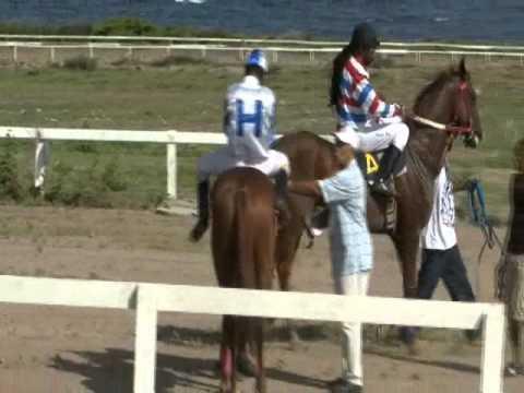 Race #1 Post Culturama 2011