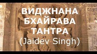 ВИДЖНАНА БХАЙРАВА ТАНТРА без комментариев (Jaidev Singh)