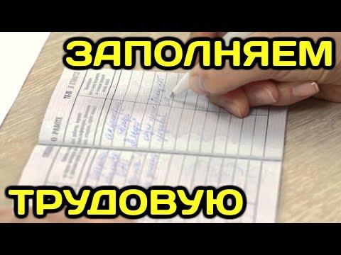 Как сделать запись в трудовой книжке (трудовая книжка оформление заполнение образец трудовой книжки)
