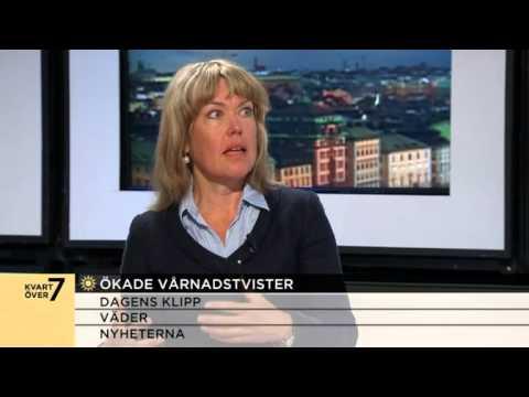 Vårdnadstvister mellan föräldrar allt vanligare - Nyhetsmorgon (TV4)