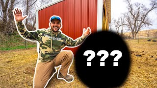 Buying QUARANTINE SURVIVAL Animals at the AUCTION!!! (CATCH CLEAN COOK)