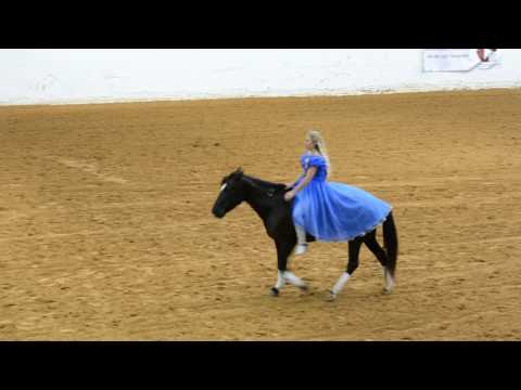 "Mustang and ""Cinderella"" perform bridle less—Mustang Maddy at 2017 Mustang Magic Freestyle"