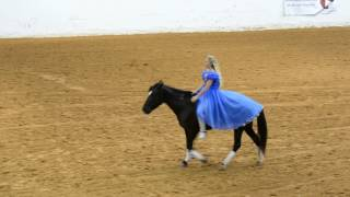 """Mustang and """"Cinderella"""" perform bridle less—Mustang Maddy at 2017 Mustang Magic Freestyle"""