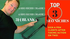 Top SEO Niches For Getting SEO Clients ( Easiest 3 To Sign Fast )