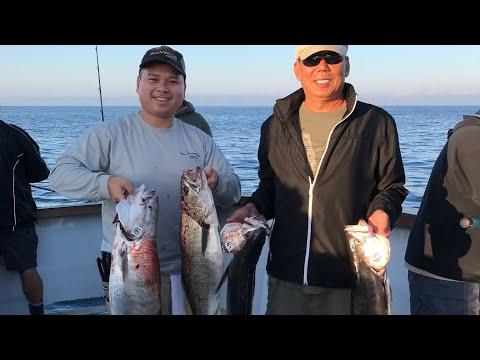 Mirage Sportfishing In Channel Island Sportfishing