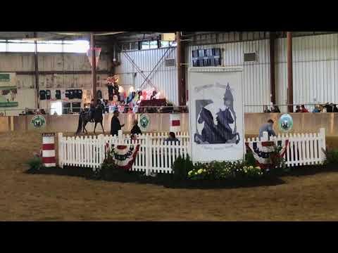 Greater Boston Charity Horse Show  May 27,  2018  w/Scott Neidlinger