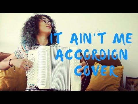It aint me - Kygo Selena Gomez Mulett Accordion Cover