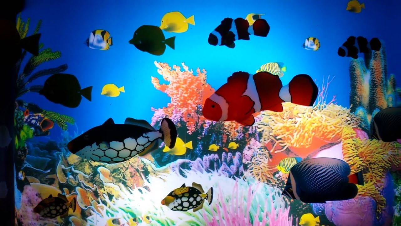 3d Fish Tank Wallpaper Animated Aquarium Scene Lamp Youtube