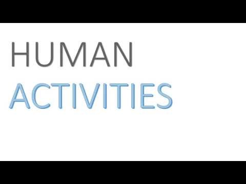 Human Activities (business studies class 11th)