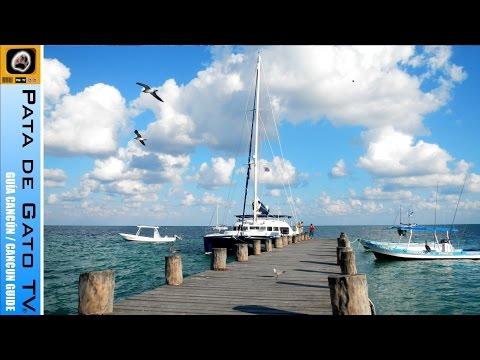 Guía Cancún - Puerto Morelos 2015 / Cancun Guide - Puerto Morelos 2015