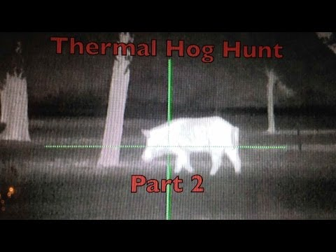 Thermal Hog Hunting Part 2