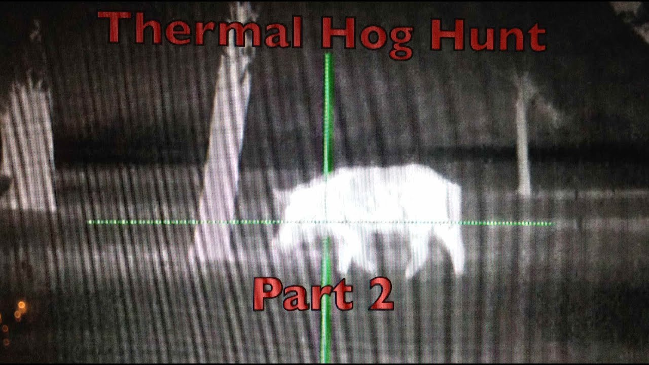 Thermal hog hunting part 2 youtube for Thermal watches