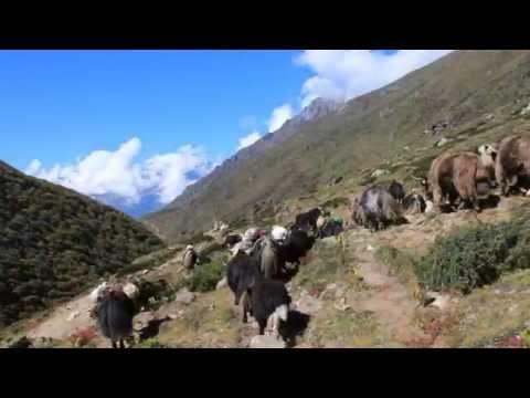 Nepal. Sagarmatha National Park. Everest Base Camp