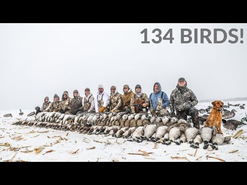 EPIC Duck And Goose Hunting In A Blizzard! (134 BIRDS)