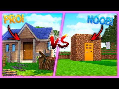 BOY -VS- GIRL NOOB -VS- PRO !! Minecraft LITTLE KELLY w/ TIny Turtle
