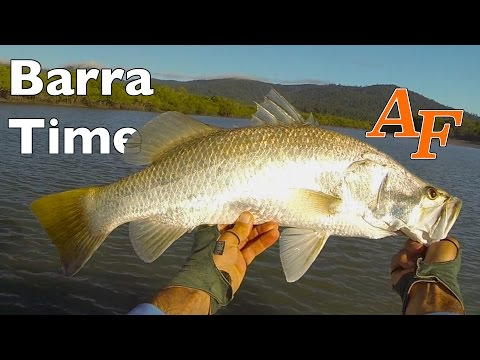 Lure Fishing Barramundi The Right Time Andysfishing Andy's Fish Video EP.229