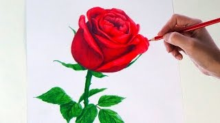 pencil rose flower drawings simple colored drawing flowers sketch easy draw pencils roses colour sketches getdrawings step paintingvalley clipartmag