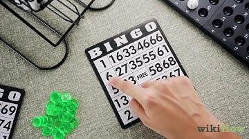 Wo Kann Man Bingo Spielen