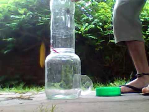 Como cazar una tarantula en casa youtube - Cazar ratones en casa ...