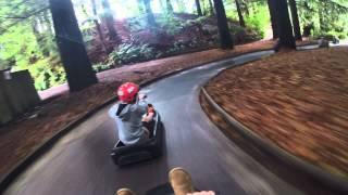 Rotorua Skyline Luge - Scenic Track