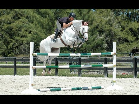 Horse Jumps ProTips - Ride-A-Course with Todd Minikus