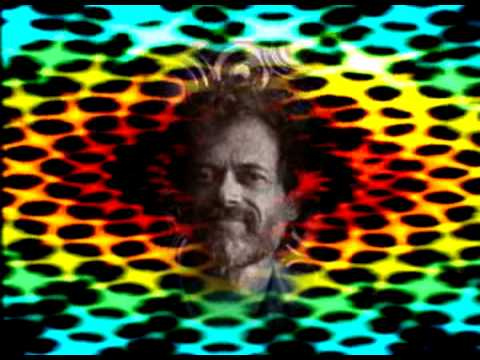 Terence McKenna- The strangest things happen on DMT