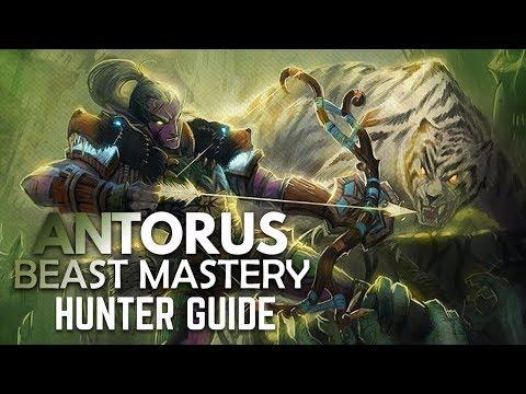 WoW - Legion Beast Mastery Hunter BASIC Antorus Guide (Patch 7.3.5)