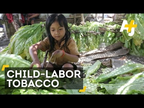 Are You Smoking Child-Labor Tobacco?
