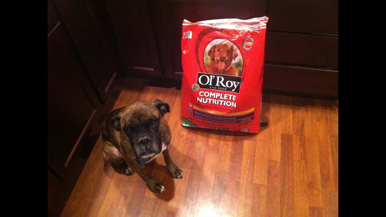 Is Ol Roy Dog Food Good For Your Dog