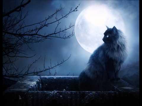 Lady Moon video