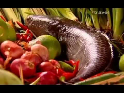 Travel in Thailand - Planet Food - Thailand - Travel Documentary