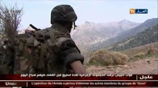 عاجل : الجيش الجزائري  يقضي  على 4 ارهابيين من جند الخلافة ببودواو في بومرداس