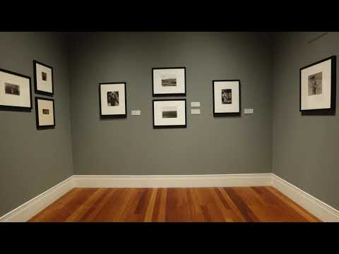 """a-virtual-look-at-""""revelations:-recent-photography-acquisitions"""""""