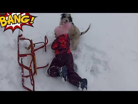 Кристина играет с собачкой по имени Бантик!