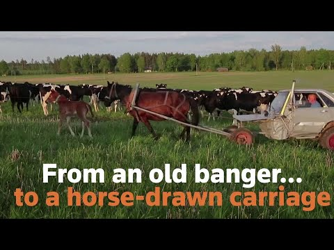 Belarusian Farmer Turns Old Car Into Horse-drawn Carriage
