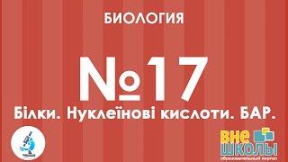 Онлайн-урок ЗНО. Биология №17. Белки. Нуклеиновые кислоты. БАВ.