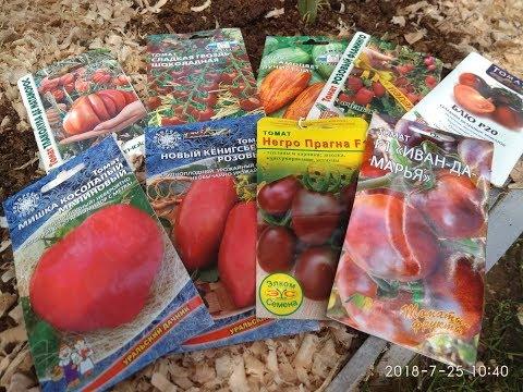 Семена томатов. Пересортица от разных  фирм