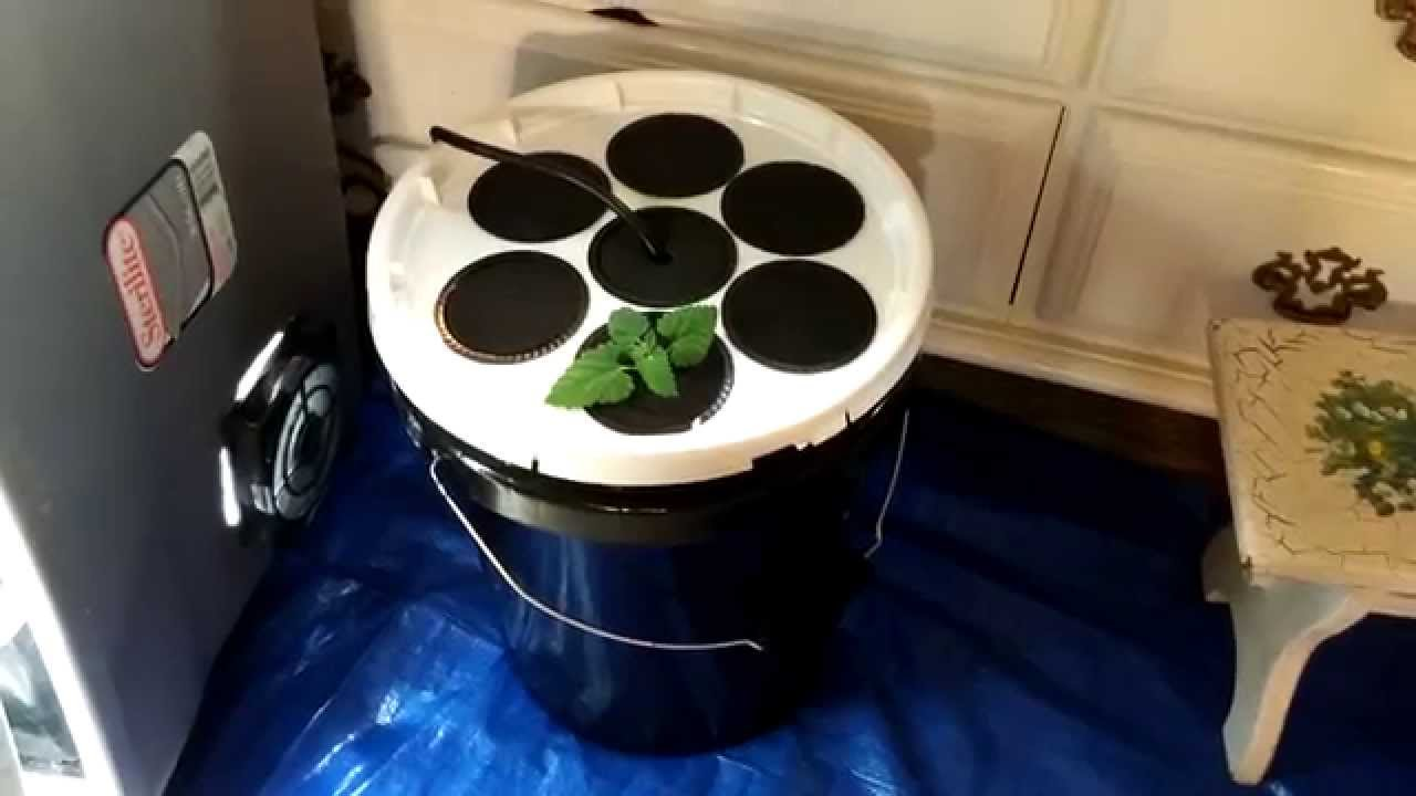 Easiest Diy Aeroponics Cloner Ever No Pvc Youtube