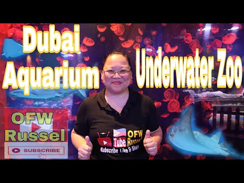 Dubai Mall Aquarium and Underwater Zoo 2019