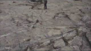 Calogero - La fin de la fin du monde (clip officiel)