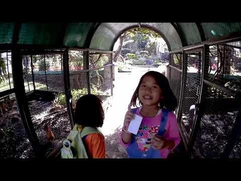 yuk-berwisata-ke-taman-balekambang-tawangmangu
