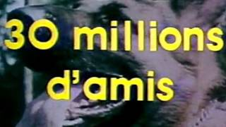 30 millions d'amis (  1976 1982