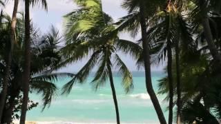 キューバ バラデロ メリア ラス アメリカス ロビーからの眺望
